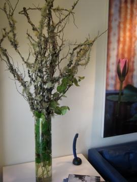 Flower Arrangement, uncouth gourmands